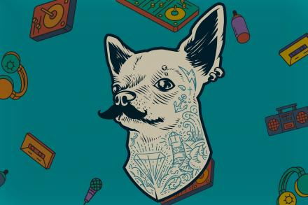Immagine di Oriana Cuevas su Pixabay https://pixabay.com/illustrations/tumblr-madness-hipster-dog-vintage-3508718/