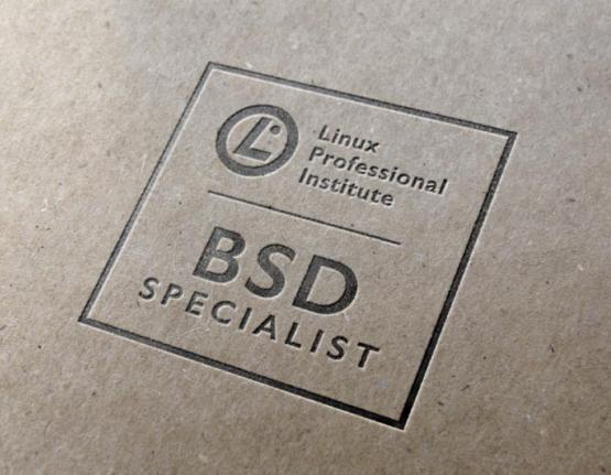 BSD Specialist logo on paper background